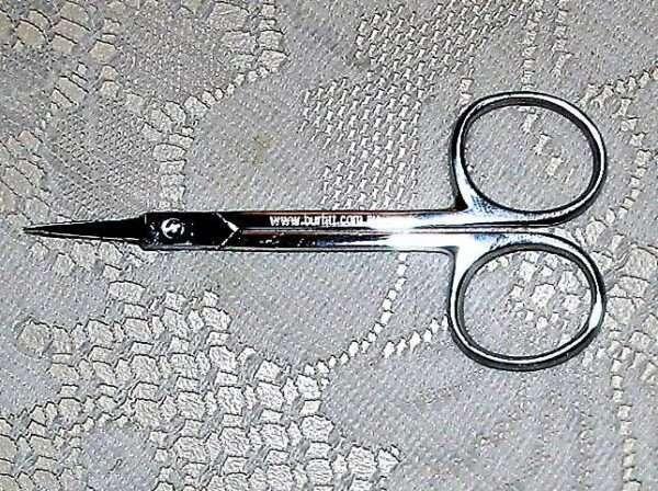parchment scissor straight 1